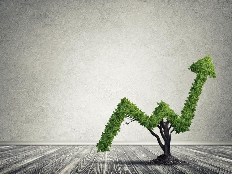 Finanza sostenibile: Reputazione o business?